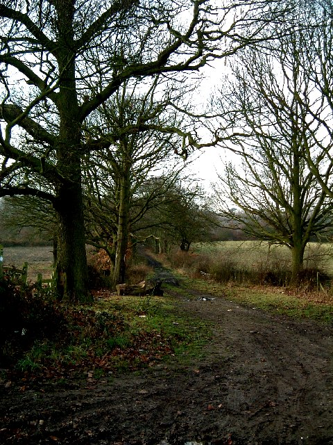 Track to Baddesley Ensor from Waste Lane
