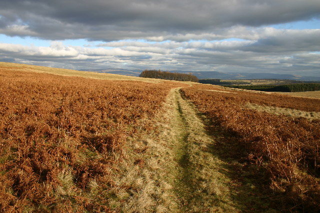 Bridleway to Riggingleys Top