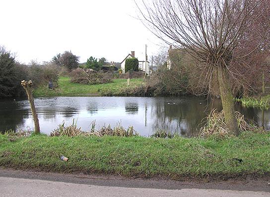 Cole Pool, Burton