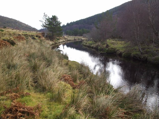 Looking down the Strath Rory Burn