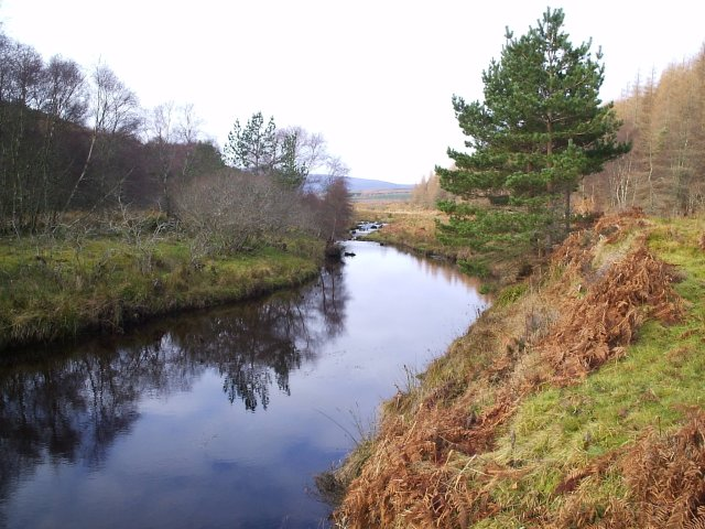 Looking up the Strathrory Burn