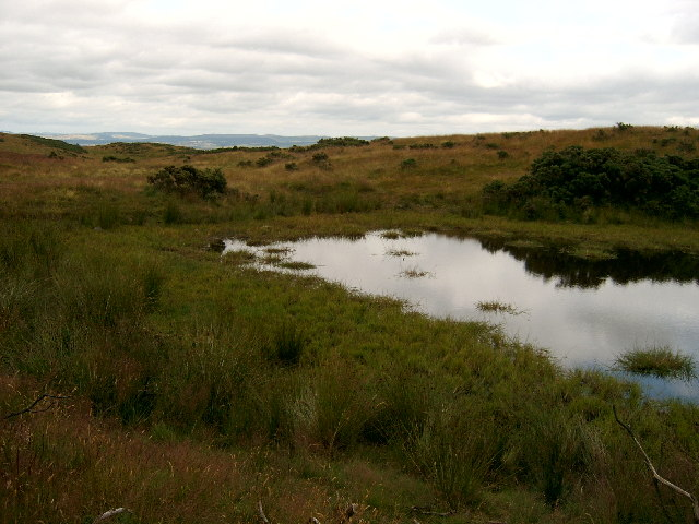 Pond on Hill of Alyth
