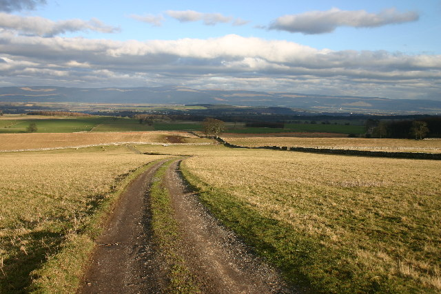 Bridleway with a View