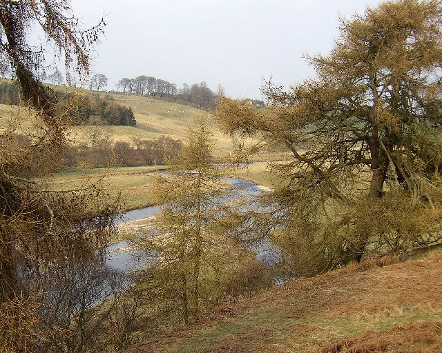 River Coquet looking towards West Hepple
