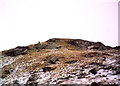 NN2204 : On the north ridge of Ben Donich by bill copland