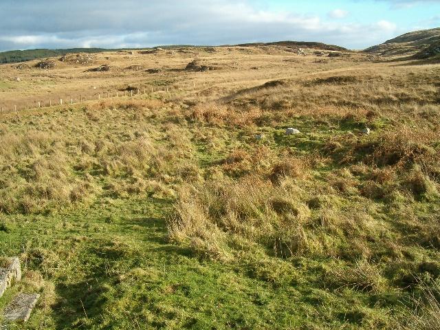 Rough grazing on Islay