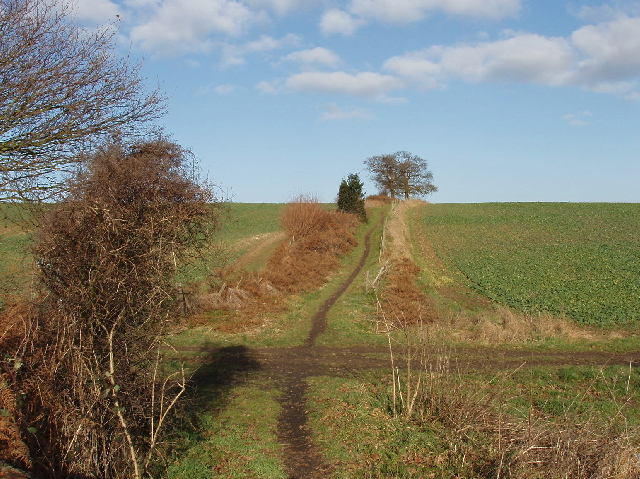 Shire Lane bridleway junction, near Denham