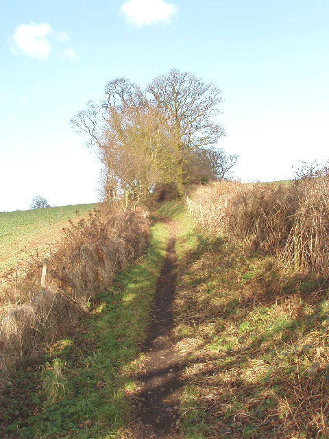 Bridleway from Denham to Chalfont Common