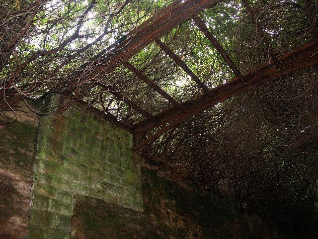 Iron footbridge from Strawberry Bank to Perniehall Plantation