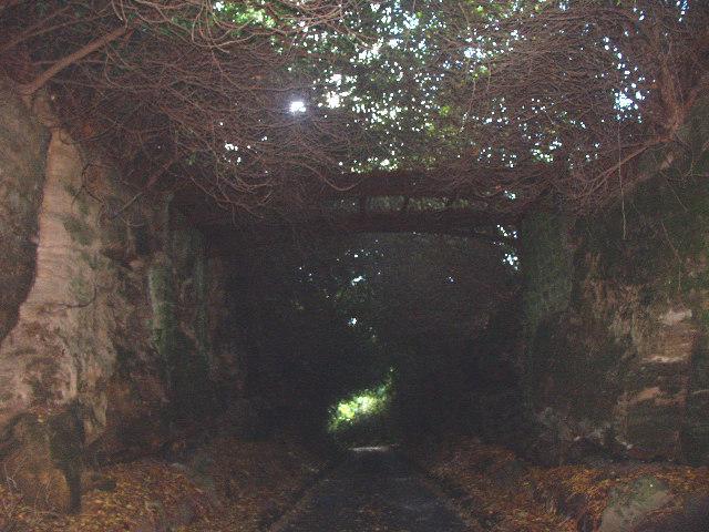 Iron footbridge over cutting through rock