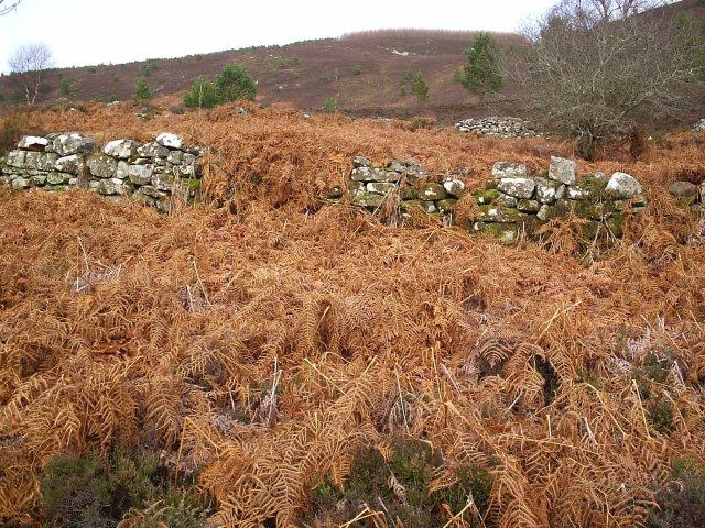 An Old Sheepfold near Cnoc an Duin Fort