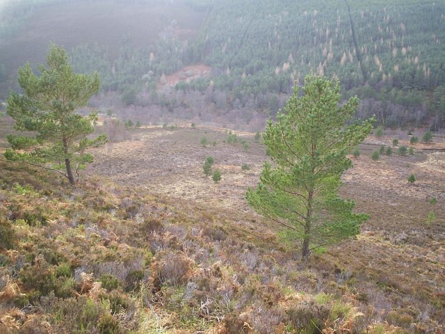 Looking down into Strathrory