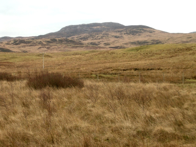 Moorland on the Dunlossit Estate