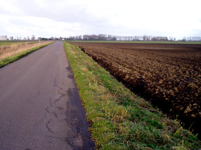 Road across Burnt Fen