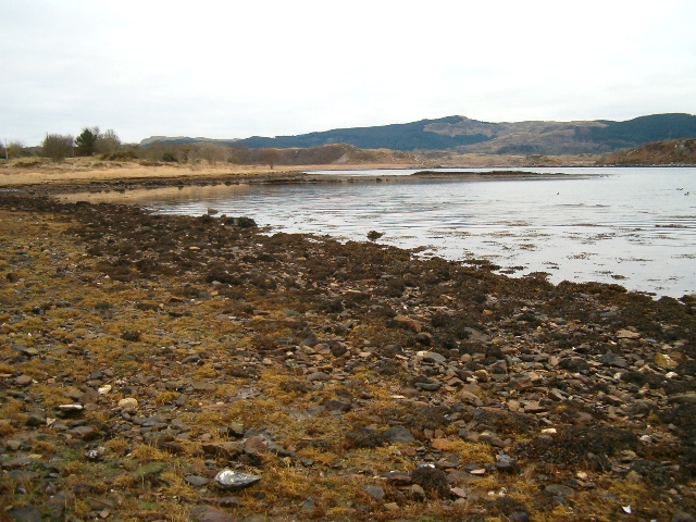 Foreshore, Loch Craignish