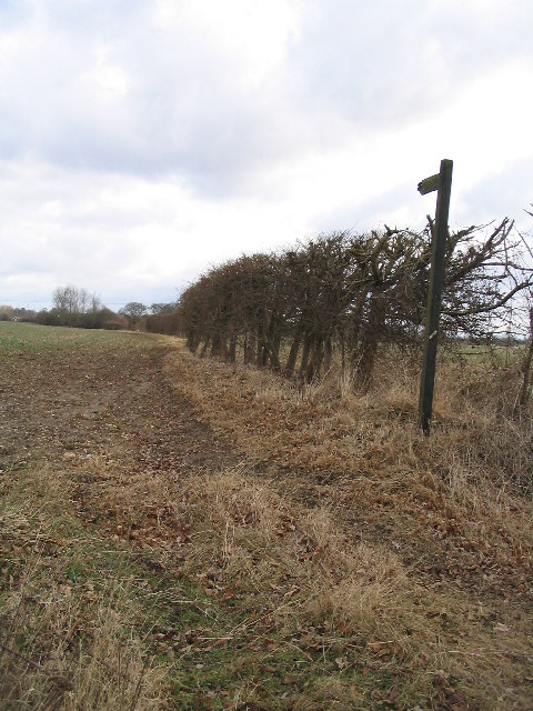 Footpath to Roundbush Farm