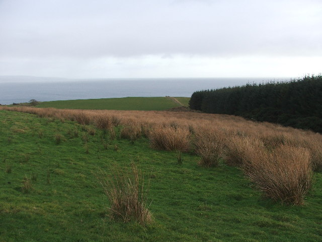 North side of Black Loch Forest.