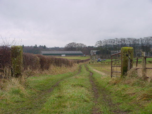 Track to Harbybrow