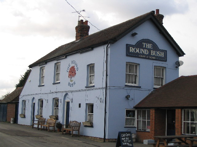 The Roundbush