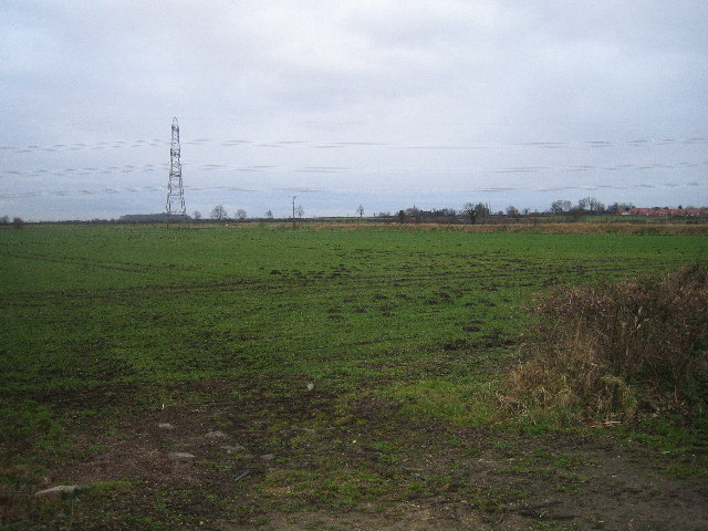 Field from Thorpe Lane