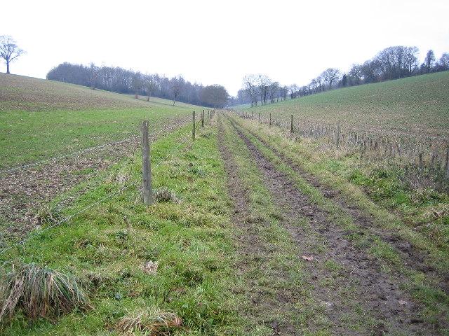 Chesham: Herberts Hole & The Chiltern Link Footpath