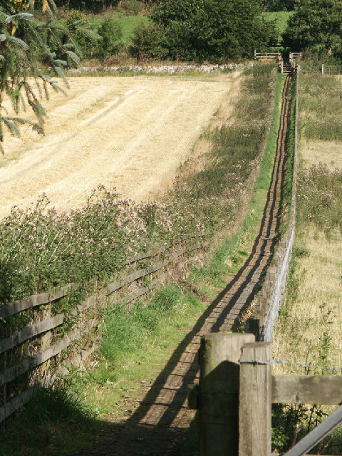 Link Path