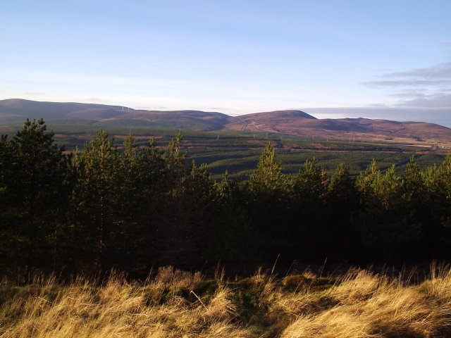 A view from a Forestry Road on Cnoc an t-Sabhail