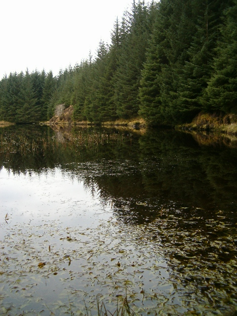The north shore of Lochan Dubh