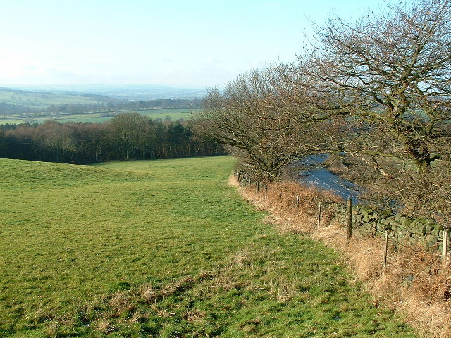 Towards Savin Royd Wood