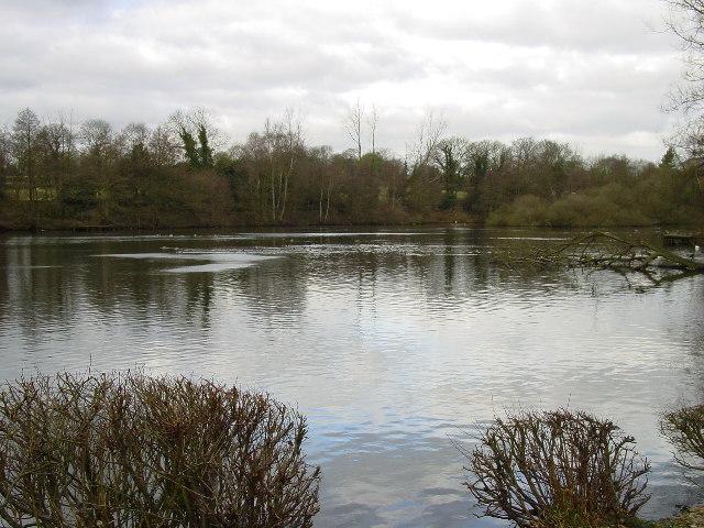Lake by Knoll Lodge
