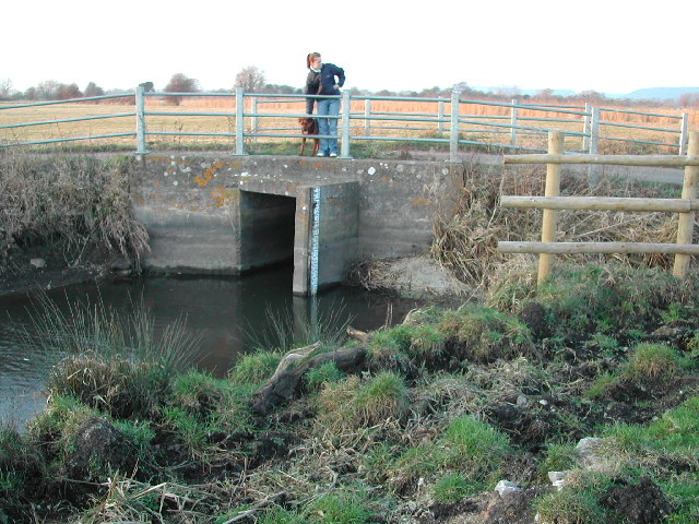 Bridge over the rhyne