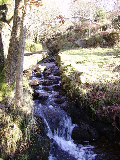 Trough Brook at Birk Bank