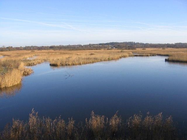 Strumpshaw Fen RSPB Nature Reserve
