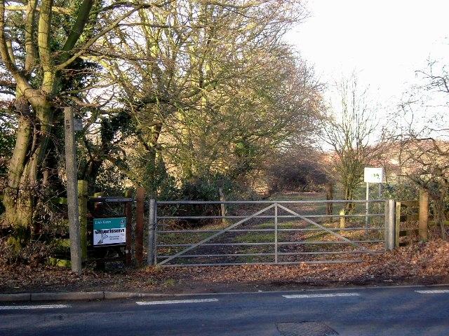 Little Haven Gate