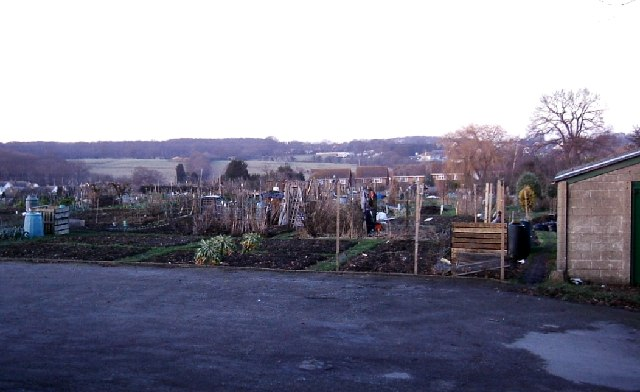 Hadleigh Allotments