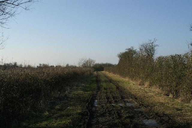 Track on Allerton Moor
