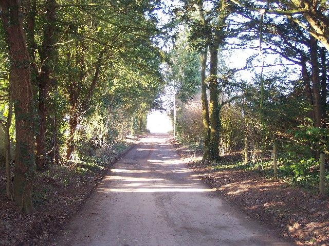 Bridleway from Bredenbury to Grendon Court.