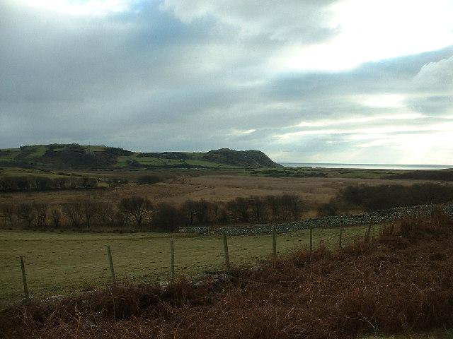 Wetlands near Pentrefelin