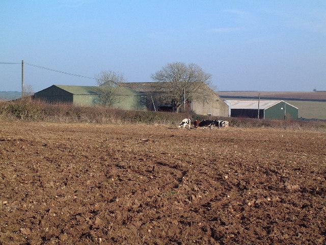 Parsonage Farm, Dewlish