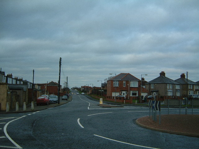 Up Cushycow Lane