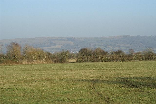Wedmore Moor