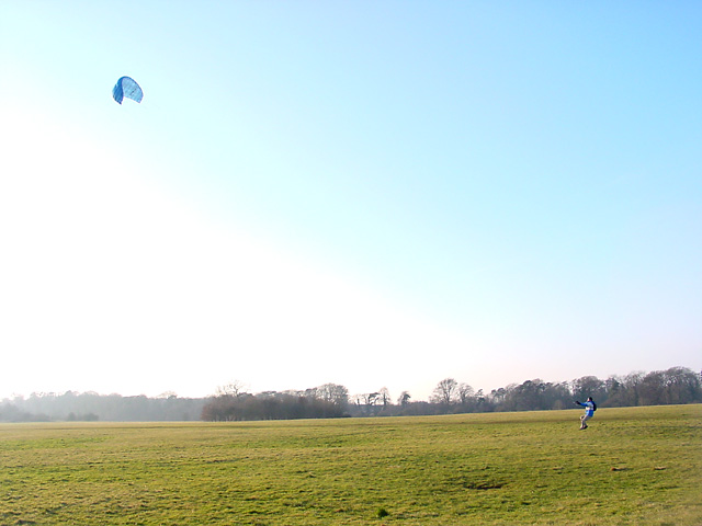 Kite flying in Ashton Court