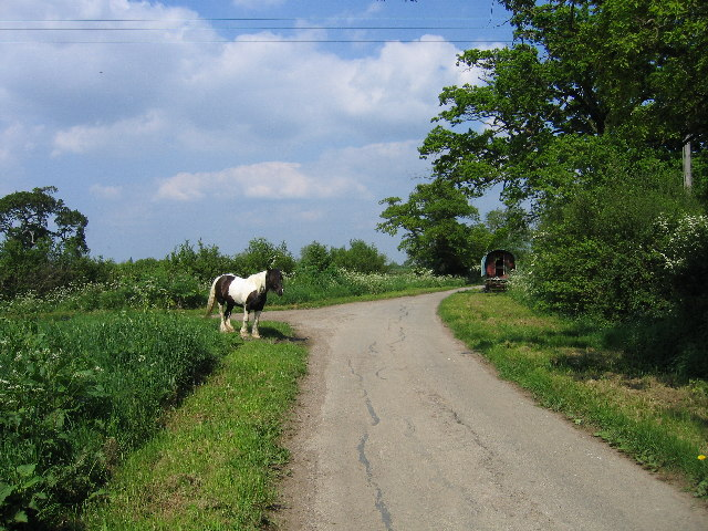 Moorend Lane with traveller's horse and caravan
