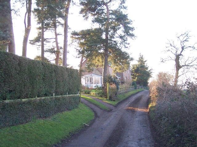 Bowman Hill