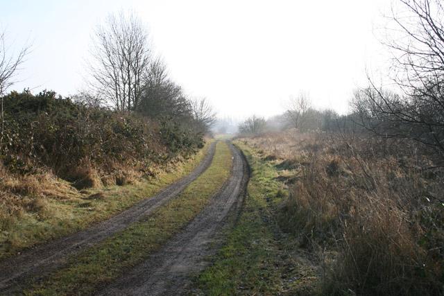 Track off Gorse Lane, Hungerton, Lincolnshire