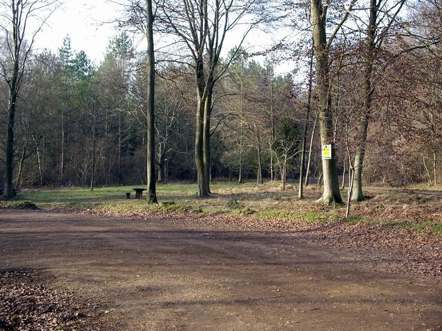 Parking and picnic area at Micheldever Wood