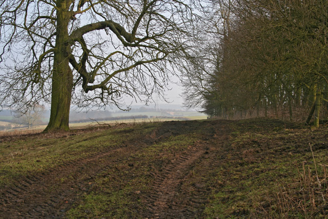 Farmland at Stroxton