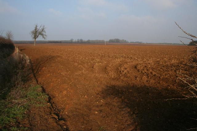 Farmland at Lodge Farm near Stroxton
