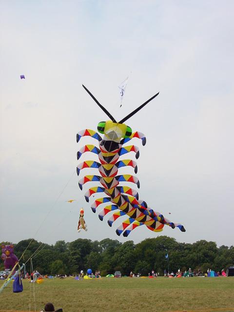 Bristol International Kite Festival, Ashton Court