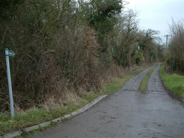 Cornhill Lane - the Bridleway to Letcombe Regis